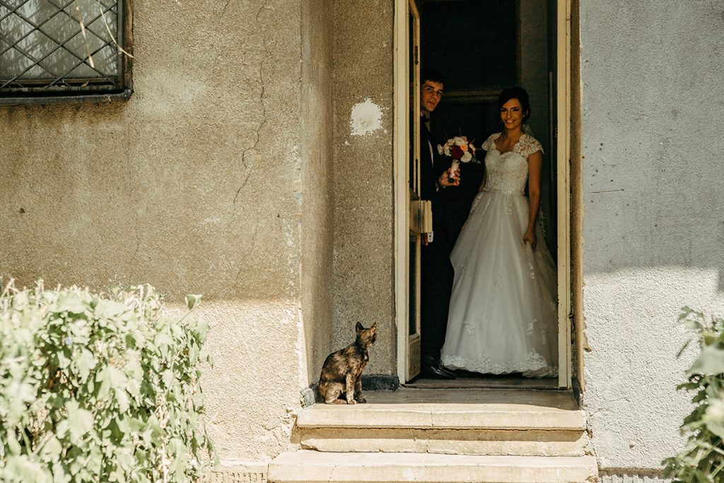 Timotei & Gabriela - Wedding 70